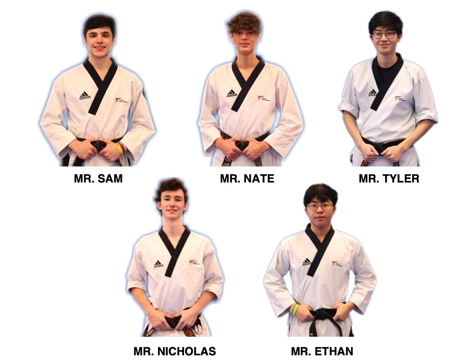 Martial Art Taekwondo Ellicott City Maryland